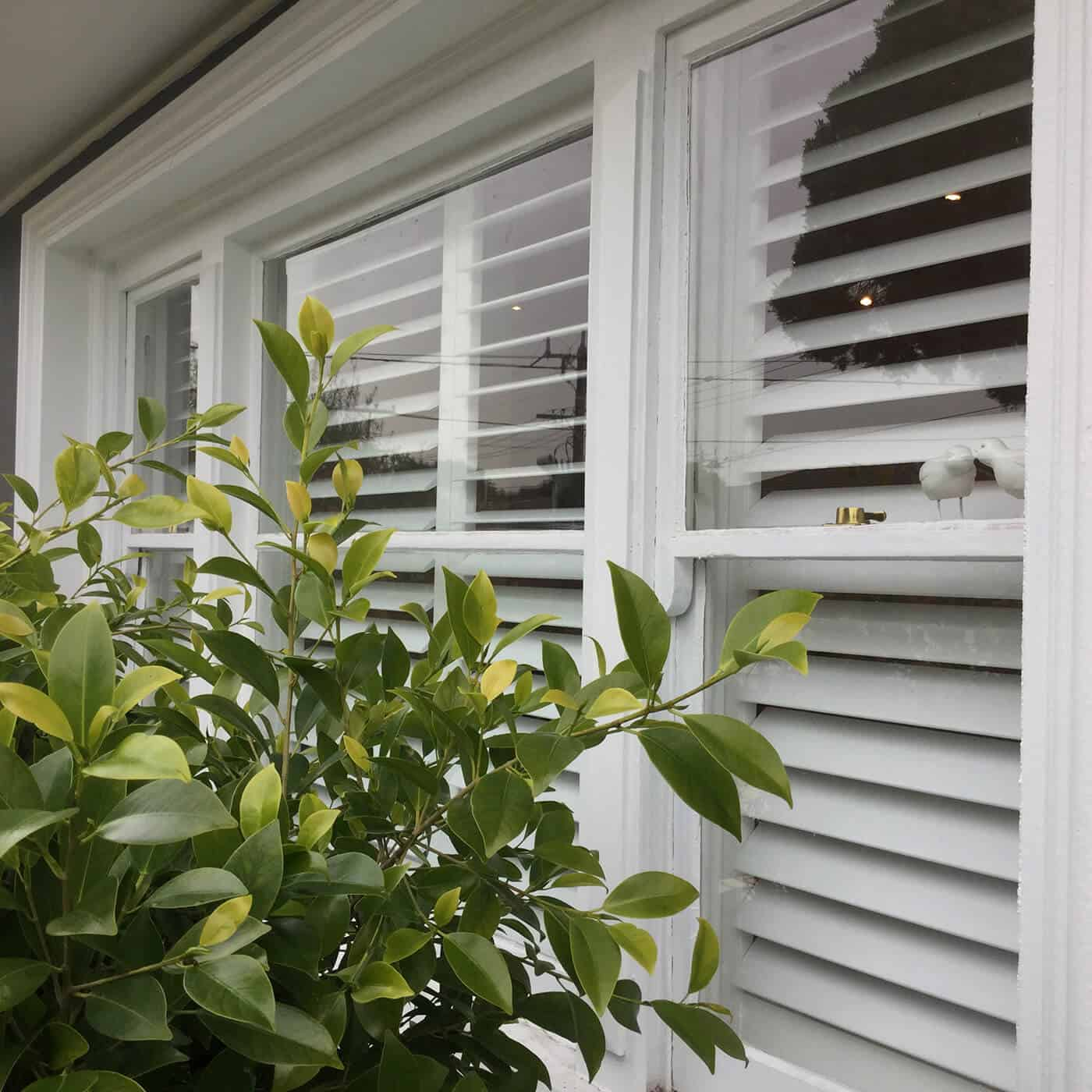 Plantation-Shutters-Top-Spot-Blinds-Melbourne (18)